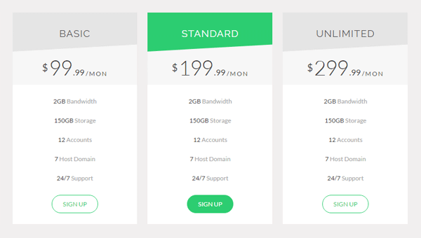 Demo Image: HTML And CSS Pricing Table