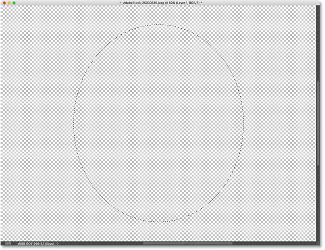 Drawing an elliptical selection outline on the bottom layer