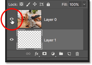 Clicking the layer visibility icon to hide the image