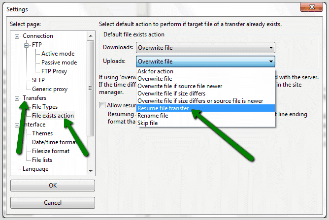 APPE options in FileZilla