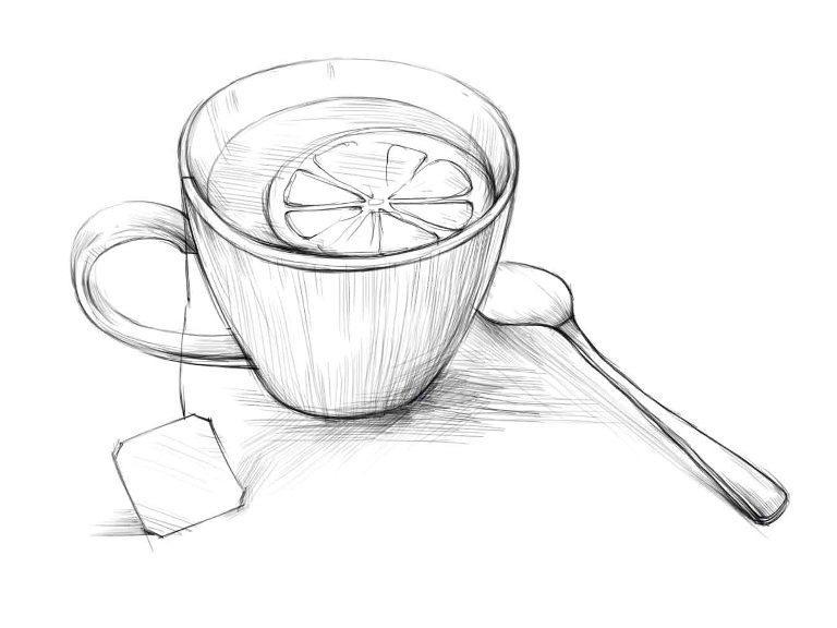 Чай рисунок карандашом