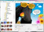Графический редактор онлайн на русском – Бесплатный Онлайн Фоторедактор | FOTOR