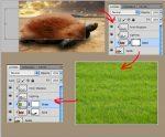 Как добавить маску слоя в фотошопе – Photoshop