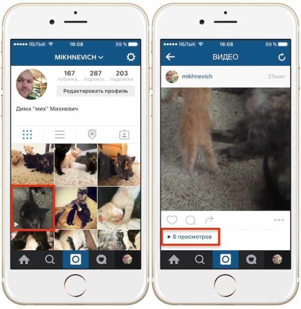 парусник как посмотреть просмотры в инстаграме к фото участники